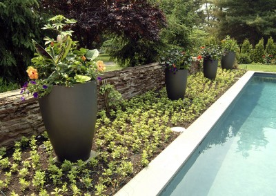 pool and planters